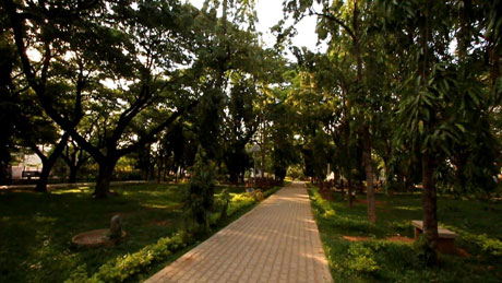 A Walk In The Park, Davangere